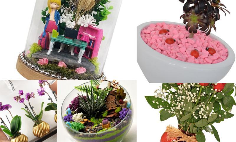 Saksı Çiçekleri ile Sevdiklerinizi Mutlu Edebilirsiniz